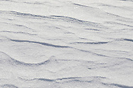 The snowstorm's wind has sculpted creative wave patterns into the new-fallen snow.