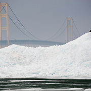 Atop Of Pile Of Blue Ice A Bald Eagle Is Dwarfed By The Towering Mackinac Bridge In The Background
