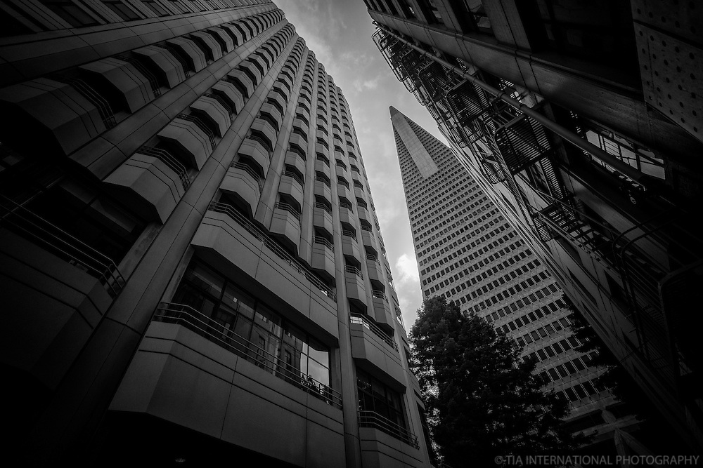 Consulate General of Sweden (left) & Transamerica Pyramid