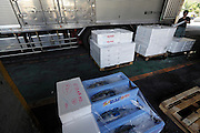 Tokyo, Tsukiji wholesale fish market  at end of day fresh fish ready for transport