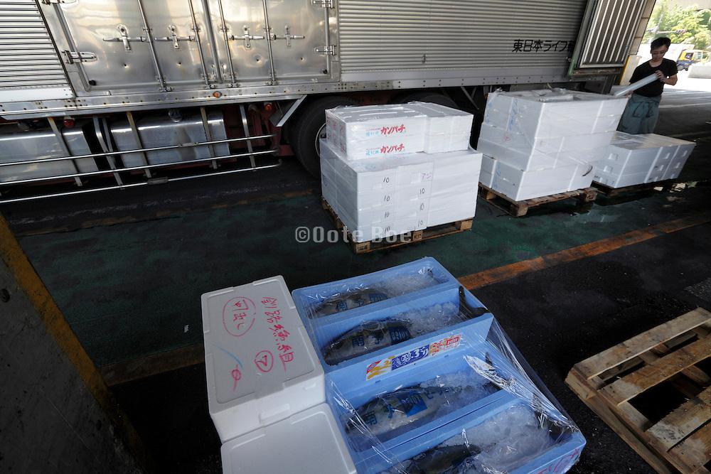 Tokyo, Tsukiji wholesale fish market  at end of day fresh fish ready for transport