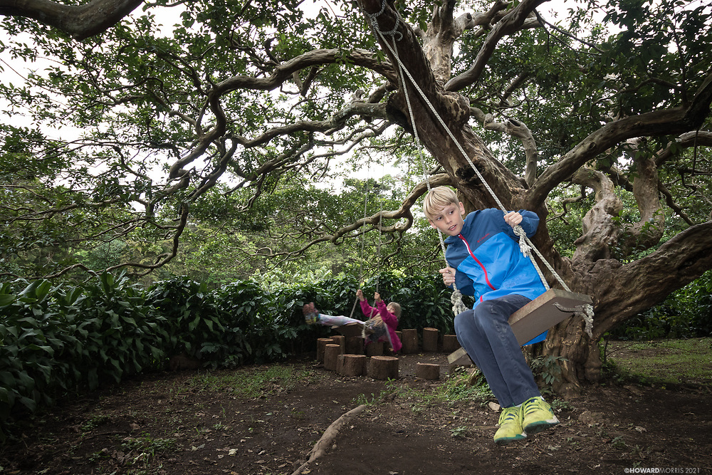 A brother and sister play on the swings at a coffee plantation. Monteverde, Costa Rica.