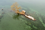 https://Duncan.co/small-island-with-one-tree-and-sunken-boat