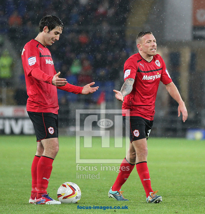 Picture by Mike  Griffiths/Focus Images Ltd +44 7766 223933.12/01/2013.Peter Whittingham (Left) and Craig Bellamy (right) appeal to the referee about the distance of the Ipswich wall at Cardiff City v Ipswich Town during the npower Championship match at the Cardiff City Stadium, Cardiff.
