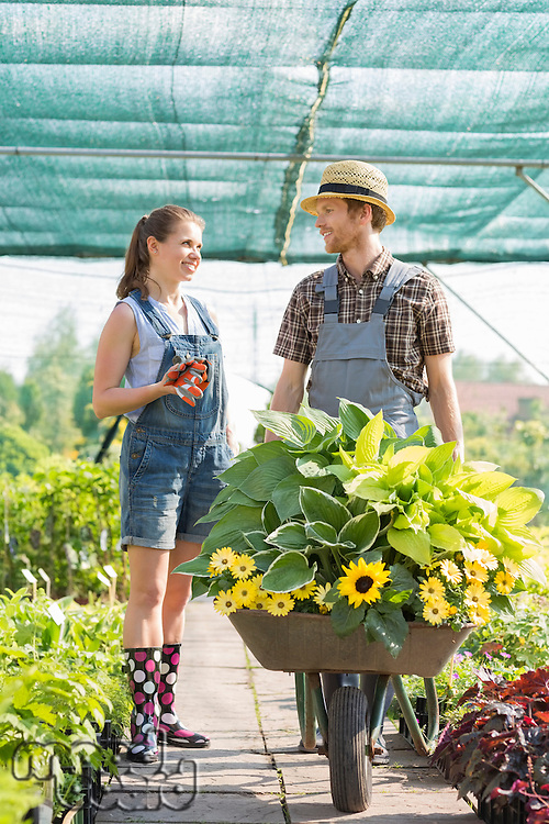 Smiling gardeners discussing while pushing plants in wheelbarrow at greenhouse