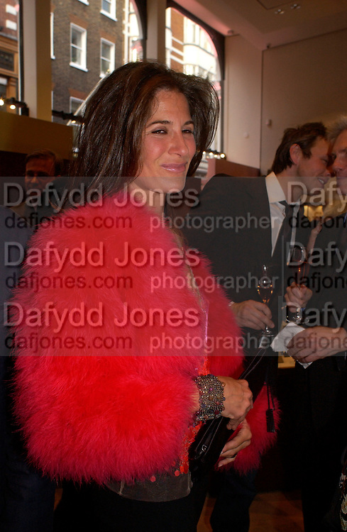 Elizabeth Saltzman, Asprey Store relaunch party after rebuilding. New Bond St. 18 May 2004. ONE TIME USE ONLY - DO NOT ARCHIVE  © Copyright Photograph by Dafydd Jones 66 Stockwell Park Rd. London SW9 0DA Tel 020 7733 0108 www.dafjones.com