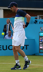 June 19, 2018 - United Kingdom - Andy Murray (GBR) fields the pain.during Fever-Tree Championships 1st Round match between Nick Kyrgios (AUS) against Andy Murray (GBR) at The Queen's Club, London, on 19 June 2018  (Credit Image: © Kieran Galvin/NurPhoto via ZUMA Press)