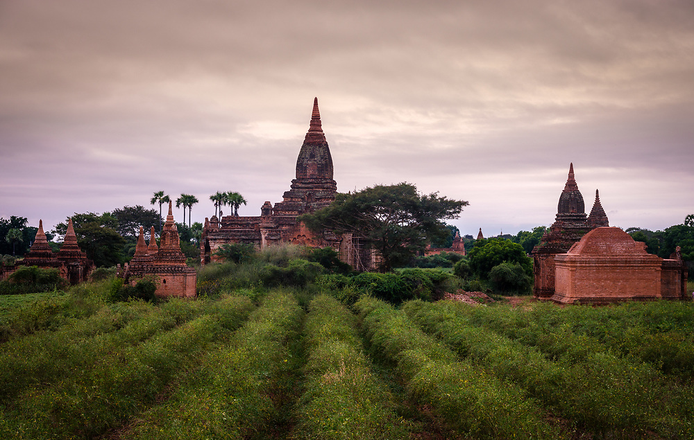 BAGAN, MYANMAR - CIRCA DECEMBER 2017: Temple over the plains of Bagan in Myanmar (Burma)