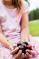 Close-up of hands full with bing cherries