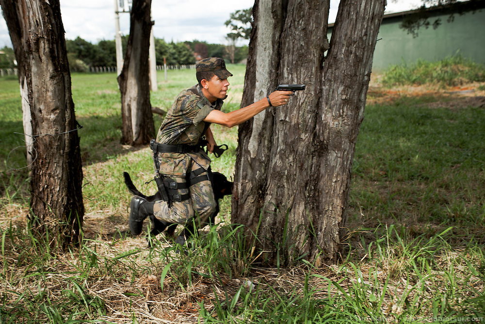 Brazilian Air Force soldiers train dogs for sniffing drugs, bombs, and for attack.