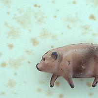 Worn lead model of jaunty plump pig lying on antique paper