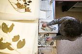 15.04.10 - NYBG Herbarium