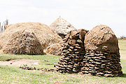Africa, northern Ethiopia, Lalibela, Hut with a pile of drying cow dung used as a burning material for cooking