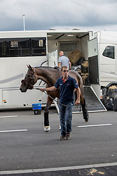 Team France arriving at the Horse Inn<br /> Departure of the horses to the Rio Olympics from Liege Airport - Liege 2016<br /> © Hippo Foto - Dirk Caremans<br /> 29/07/16