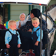 Mennonite family riding in horse and buggy in Shipyard village
