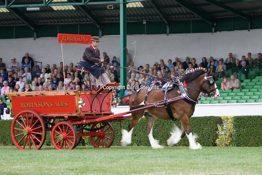 Single Heavy Horse Turnouts at the Great Yorkshire Show 2010