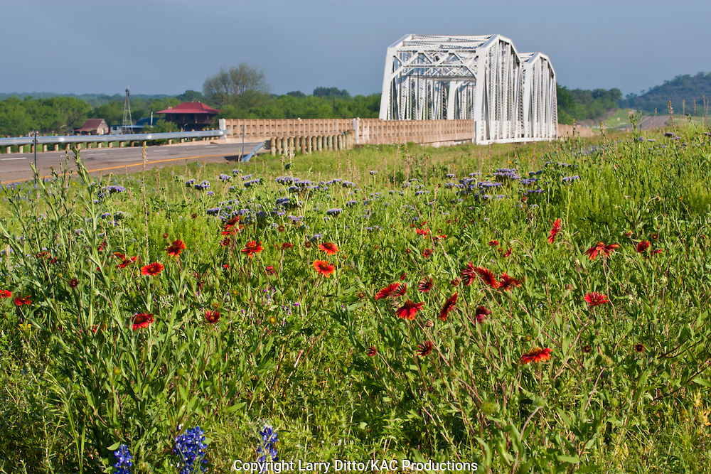 Wildflowers by Llano River bridge in spring