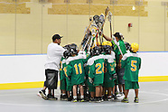 Lacrosse 2011 Newtown Novice vs Allegany