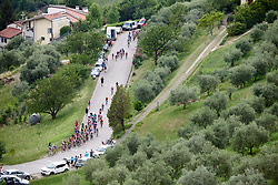 The peloton continue to climb during Stage 7 of 2019 Giro Rosa Iccrea, a 128.3 km road race from Cornedo Vicentino to San Giorgio di Perlena, Italy on July 11, 2019. Photo by Sean Robinson/velofocus.com