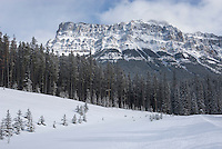 Castle Mountain in winter from Bow River Valley, Banff National Park Alberta Canada