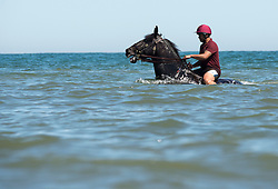 © London News Pictures. 03/07/2015. Soldiers and horses of the Household Cavalry Mounted Regiment enjoyed a morning riding on the beach and in the sea at Holkham Beach on the North Norfolk coast. Photo credit: Sergeant Rupert Frere/LNP