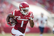 FAYETTEVILLE, AR - SEPTEMBER 5:  Jared Cornelius #1 of the Arkansas Razorbacks returns a kick off during a game against the UTEP Miners at Razorback Stadium on September 5, 2015 in Fayetteville, Arkansas.  The Razorbacks defeated the Miners 48-13.  (Photo by Wesley Hitt/Getty Images) *** Local Caption *** Jared Cornelius