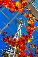 Chilhouly Glass Musuem and Space Needle