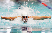 Moss Burmester competes in the Men's 100m Butterfly heat at the New Zealand Swimming World Championship Trials at the West Aquatic Centre, Auckland, New Zealand, on Tuesday 12 December 2006. Photo: Hannah Johnston/PHOTOSPORT<br /><br /><br />121206