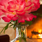 Pink and white rose detail infront of fireplace.