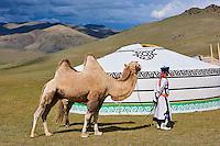 Mongolie, province de Uvs, région de l'ouest, campement nomade dans la steppe // Mongolia, Uvs province, western Mongolia, nomad camp in the steppe