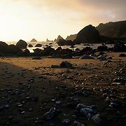 The rocky, picturesque, southern Oregon coast in the Pacific Northwest, USA, is illuminated by the setting sun. The wet sand and rocks make for a rugged looking coast line.