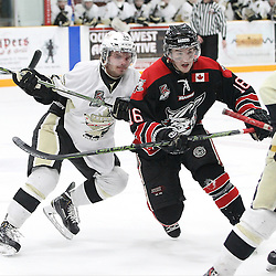 TRENTON, - Apr 15, 2016 -  Ontario Junior Hockey League game action between Trenton Golden Hawks and the Georgetown Raiders. Game 1 of the Buckland Cup Championship Series. At the Duncan Memorial Gardens, ON. Trenton Golden Hawks Ethan Skinner #14 and Blayne Oliver #16 of the Trenton Golden Hawks battle for the puck during the first period.<br /> (Photo by Tim Bates / OJHL Images)