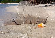 Cayos Ana Maria, Ciego de Avila, Cuba.