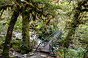 Footbridge on the Routeburn Track in Fiordland National Park, near Te Anau, Southland region, South Island of New Zealand. In 1990, UNESCO honored Te Wahipounamu - South West New Zealand as a World Heritage Area.