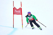 Schladming, Austria - 2017 March 19: Nicole Delgado from Chile (107) competes in Alpine Skiing Competition while Special Olympics World Winter Games Austria 2017 on the &quot;Sepp-Walcher-Downhill&quot;<br /> (Slope 32) near the &quot;Tauernalm&quot; in Rohrmoos on March 19, 2017 in Schladming, Austria.<br /> <br /> Mandatory credit:<br /> Photo by &copy; Adam Nurkiewicz / Mediasport<br /> <br /> Adam Nurkiewicz declares that he has no rights to the image of people at the photographs of his authorship.<br /> <br /> Picture also available in RAW (NEF) or TIFF format on special request.<br /> <br /> Any editorial, commercial or promotional use requires written permission from the author of image.<br /> <br /> Image can be used in the press when the method of use and the signature does not hurt people on the picture.