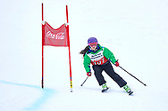 """Schladming, Austria - 2017 March 19: Nicole Delgado from Chile (107) competes in Alpine Skiing Competition while Special Olympics World Winter Games Austria 2017 on the """"Sepp-Walcher-Downhill""""<br /> (Slope 32) near the """"Tauernalm"""" in Rohrmoos on March 19, 2017 in Schladming, Austria.<br /> <br /> Mandatory credit:<br /> Photo by © Adam Nurkiewicz / Mediasport<br /> <br /> Adam Nurkiewicz declares that he has no rights to the image of people at the photographs of his authorship.<br /> <br /> Picture also available in RAW (NEF) or TIFF format on special request.<br /> <br /> Any editorial, commercial or promotional use requires written permission from the author of image.<br /> <br /> Image can be used in the press when the method of use and the signature does not hurt people on the picture."""