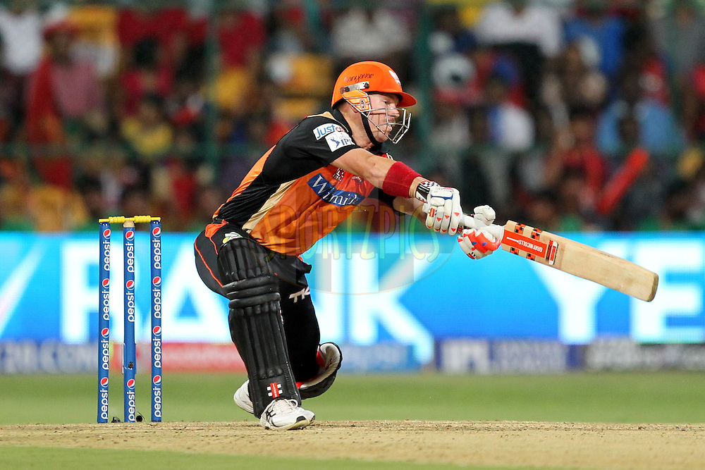 David Warner of the Sunrisers Hyderabad during match 24 of the Pepsi Indian Premier League Season 2014 between the Royal Challengers Bangalore and the Sunrisers Hyderabad held at the M. Chinnaswamy Stadium, Bangalore, India on the 4th May  2014Photo by Prashant Bhoot / IPL / SPORTZPICSImage use subject to terms and conditions which can be found here:  http://sportzpics.photoshelter.com/gallery/Pepsi-IPL-Image-terms-and-conditions/G00004VW1IVJ.gB0/C0000TScjhBM6ikg