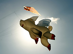 Auckland-Kites fly for Matariki, Manurewa