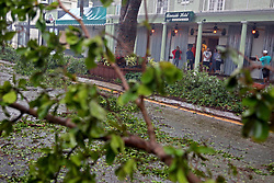 People take pictures outside of the Riverside Hotel in downtown Fort Lauderdale, FL, USA, with downed trees covering Las Olas Boulevard as Hurricane Irma continues to batter South Florida on Sunday, September 10, 2017. Photo by Amy Beth Bennett/Sun Sentinel/TNS/ABACAPRESS.COM