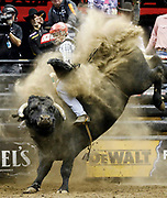 Dener Barbosa of Brazil rides Seven Dust during the Professional Bull Riders, Built Ford Tough Series at the Sprint Center, Saturday, Feb. 11, 2017, in Kansas City, Mo. (AP Photo/Colin E. Braley)