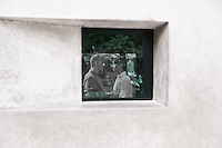 Video of two men embacing and kissing seen by looking into a window at the Memorial to Homosexuals persecuted under Nazism in Berlin.
