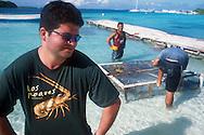 El archipiélago de Los Roques es un destino turístico del caribe que atrae igualmente cada seis meses a un grupo de pescadores durante la temporada de pesca de langostas, Una de las principales actividades económicas del lugar.  De manera artesanal, los pescadores preparan sus herramientas nasas, guantes y máscaras, para iniciar su labor en el mar. Los Roques, 2001 (Ramón Lepage / Orinoquiaphoto)   The archipelago  of los Roques is a tourist destination in the Caribbean that also lures every six months a group of fishermen during the lobster fishing season..The fishermen prepare their tools, fishing nets, gloves and masks to begin their search under the water.  Los Roques, 2001 (Ramón Lepage / Orinoquiaphoto)