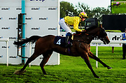 Cheeky Rascal ridden by Luke Catton and trained by Tom Ward in the Visit Four From The Top At Valuerater.Co.Uk Apprentice Handicap race.  - Ryan Hiscott/JMP - 15/09/2019 - PR - Bath Racecourse - Bath, England - Race Meeting at Bath Racecourse