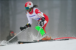 Braydon LUSCOMBE competing in the Alpine Skiing Super Combined Slalom at the 2014 Sochi Winter Paralympic Games, Russia