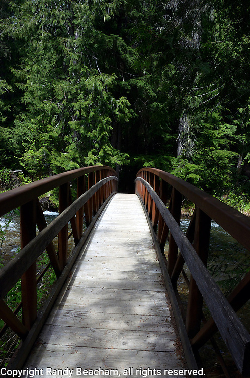Foot bridge over Ross Creek in the Ross Creek Cedar Research Natural Area. Cabinet Mountains in the Kootenai National Forest, northwest Montana.