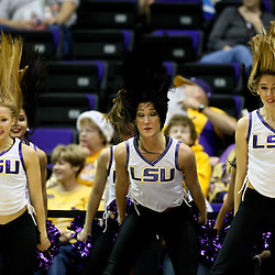 December 13, 2011; Baton Rouge, LA; LSU Lady Tigers tiger girls dancers flip their hair during the second half of a game against the UCLA Bruins at the Pete Maravich Assembly Center. LSU defeated UCLA 58-41. Mandatory Credit: Derick E. Hingle-US PRESSWIRE