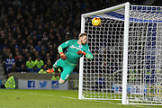 Brighton goalkeeper, David Stockdale (13) saves from Ipswich Town midfielder Kevin Bru (17) during the Sky Bet Championship match between Brighton and Hove Albion and Ipswich Town at the American Express Community Stadium, Brighton and Hove, England on 29 December 2015. Photo by Phil Duncan.