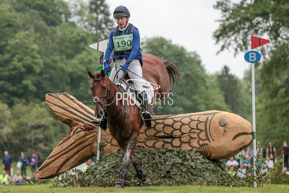 BILLY THE RED ridden by Kristina Cook at Bramham International Horse Trials 2016 at  at Bramham Park, Bramham, United Kingdom on 11 June 2016. Photo by Mark P Doherty.