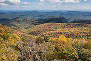 Enjoy brilliant fall leaf colors in mid October atop Beacon Heights, a scenic half-mile round trip walk with 130 feet gain from Blue Ridge Parkway Milepost 305.2 in Pisgah National Forest, North Carolina, USA. Local trees release hydrocarbons into the atmosphere, creating a characteristic blue haze over the Blue Ridge Mountains, which are a subset of the Appalachian Mountains. Beacon Heights Parking Area (elevation 4220 feet) is near the intersection with Hwy 221 (near Grandfather Mountain Entrance Road). This trail also connects with the Tanawha Trail (13.5 miles to Price Lake) and the Mountains to the Sea Trail. The scenic 469-mile Blue Ridge Parkway was built 1935-1987 to aesthetically connect Shenandoah National Park (in Virginia) with Great Smoky Mountains National Park in North Carolina, following crestlines and the Appalachian Trail.  (Photographed October 12, 2015).