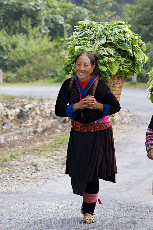 On the road from Pa Tan to Sinho. Black Hmong women carrying leaves in baskets on their backs.